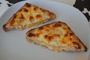 Croque-mimolette (1)