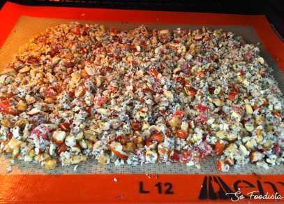Paléo crust (6)