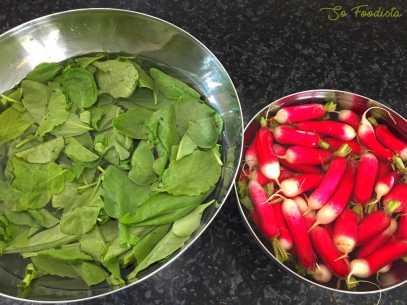 Pesto de fânes de radis (3)