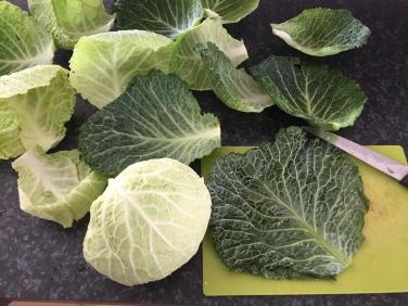Feuilles de chou vert farcies (11).JPG